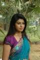 Prathista Hot Photos in Light Blue Transparent Saree