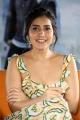 Pratiroju Pandaga Movie Actress Raashi Khanna Interview Pics