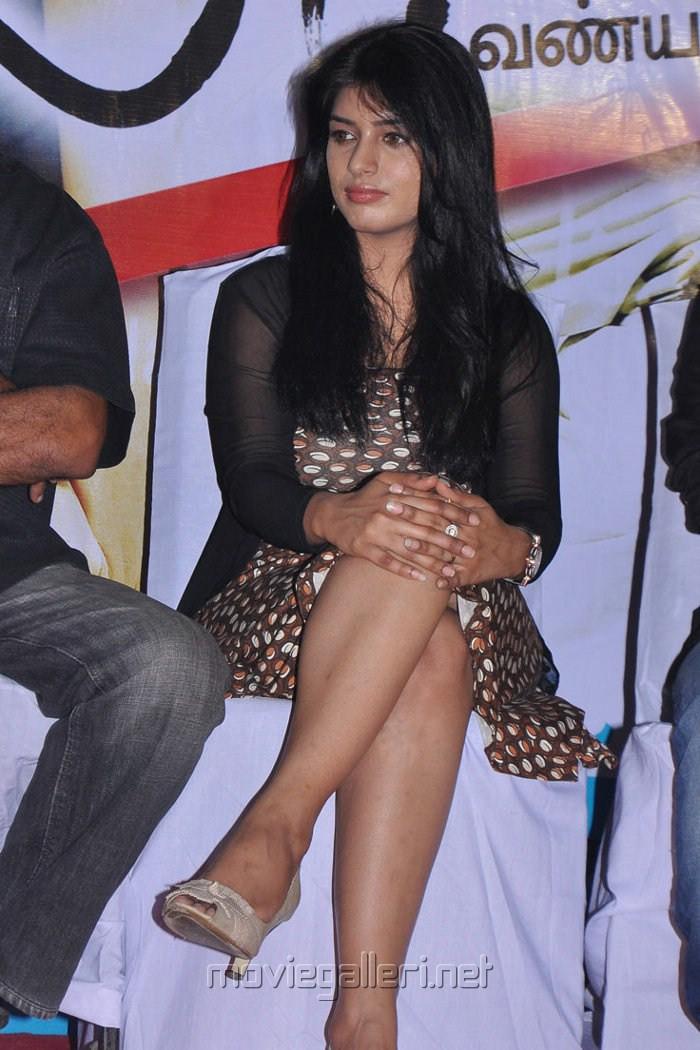 Tamil Actress Preeti Bhandari Hot Legshow Pics
