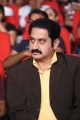 Suman @ Prema Geema Jantha Nai Movie Audio Launch Stills
