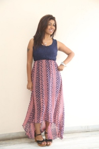 Geetanjali @ Prema Geema Jantha Nai Success Meet Stills