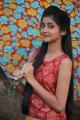 Telugu Actress Sumaya Stills from Prema Janta Movie