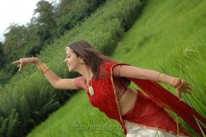 Bhavana Hot Stills in Saree