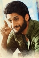 Actor Naga Chaitanya in Premam Movie Latest Stills