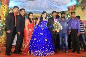 Pandiarajan Son Prithvi Rajan Akshaya Premnath Wedding Reception Stills