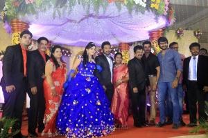 Nandha, Ramana @ Pandiarajan Son Prithvi Rajan Akshaya Premnath Wedding Reception Stills