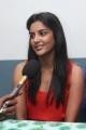 Actress Priya Anand Photos at English Vinglish Movie Press Show