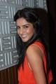 Priya Anand Cute Photos at English Vinglish Press Show