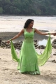 Actress Priya Anand Hot Stills in Ethir Neechal