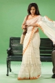 Ethir Neechal Actress Priya Anand Saree Stills