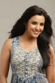Ethir Neechal Actress Priya Anand Hot Stills