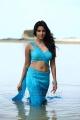 Ethir Neechal Heroine Priya Anand Hot Stills
