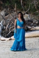 Actress Priya Anand Spicy Stills in Ethir Neechal Tamil Movie