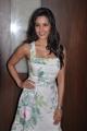 Priya Anand New Hot Pics @ 180 Tamil Movie Press Meet