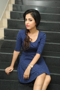 Heroine Priya Banerjee Pics at Joru Platinum Disc Celebrations