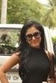 Actress Priya Banerjee Stills at Kiss Logo Launch