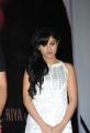 Acterss Priya Banerjee Photos at Kiss Trailer Launch