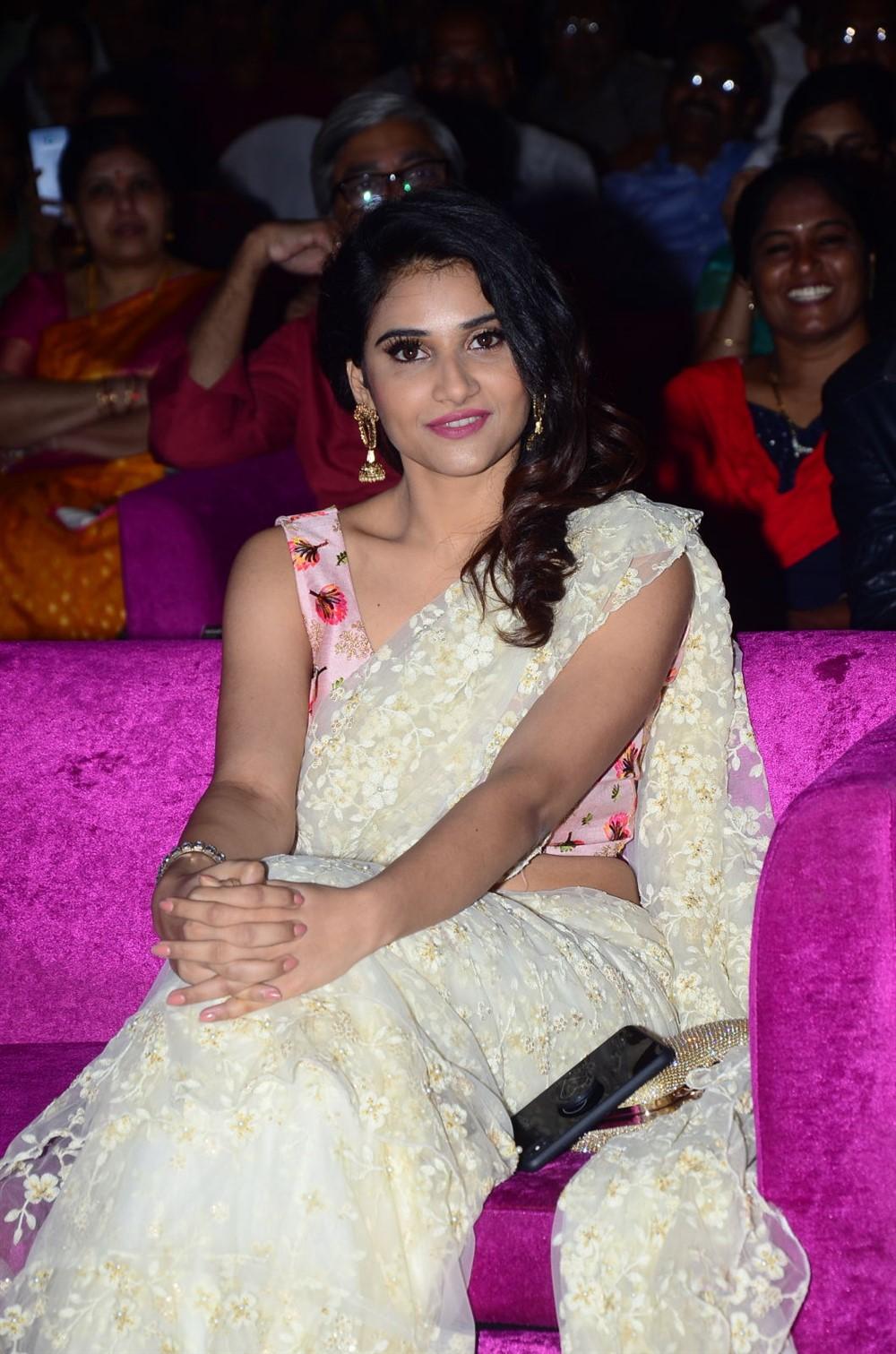 Actress Priya Singh Saree Pictures @ Rangu Movie Pre Release Function