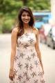 Telugu Actress Priya Vadlamani Photoshoot Hot Images