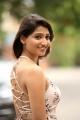 Telugu Actress Priya Vadlamani Hot Images