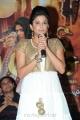 Priyamani Latest Photos at Chandi Movie Trailer Launch