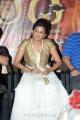 Actress Priyamani Latest Photos at Chandi Trailer Launch