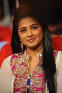 Actress Priyamani Beautiful Photos at Greeku Veerudu Audio Launch
