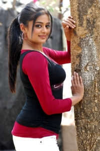 Cute Priyamani Beautiful Pics