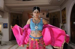 Actress Priyamani Hot in Chandi Movie Photos