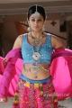 Actress Priyamani Hot Photos in Chandi Movie