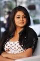 Cute Priyamani Pictures