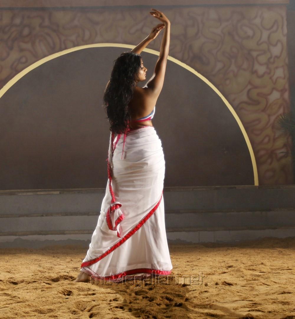 Priyamani latest hot stills priyamani latest hot photos images pics - Actress Priyamani Hot Spicy White Saree Photos