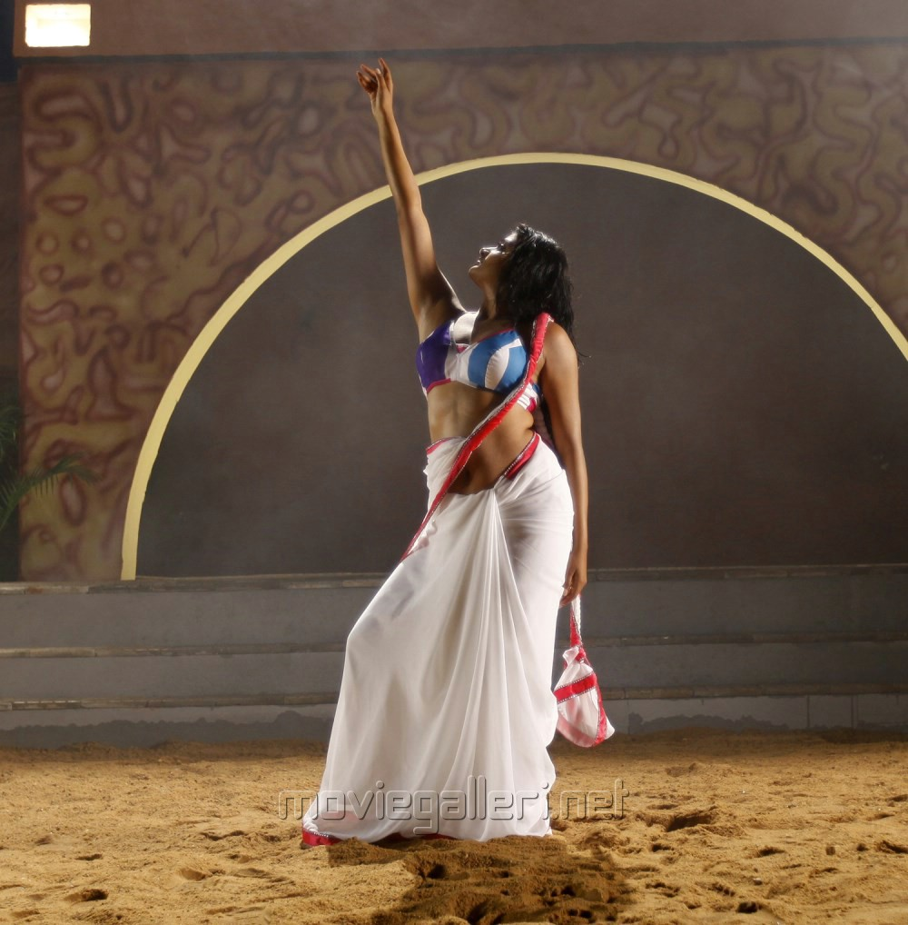 Priyamani latest hot stills priyamani latest hot photos images pics - Tikka Movie Actress Priyamani Hot In White Saree Photos
