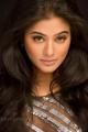 Priyamani Hottest Photoshoot Images