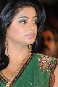 Priyamani Saree Hot Pics