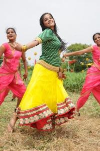 Tamil Heroine Priyamani Recent Hot Images