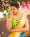 Actress Priyamani Saree Photoshoot Stills