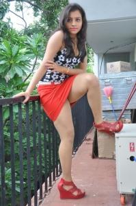 Actress Priyanka Hot Photos at Jai Ho Movie Launch