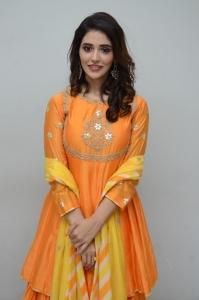 Priyanka Jawalkar New Pics @ Gamanam Movie Press Meet