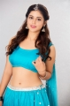 Actress Priyanka Jawalkar Hot in Blue Saree Photoshoot Stills