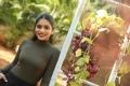 Actress Punarnavi Bhupalam Wallpapers @ Pittagoda Movie Interview
