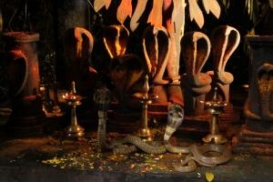 Punnami Rathri Movie New Photos