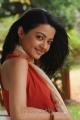 Actress Surveen Chawla in Puthiya Thiruppangal Movie Stills