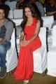 Actress Shanvi Srivastava @ Pyar Mein Padipoyane Movie Audio Launch Stills