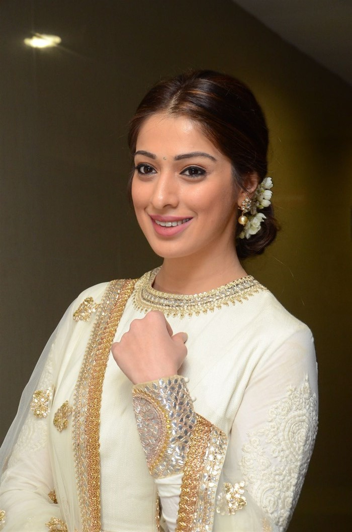 Telugu Actress Raai Laxmi Photos