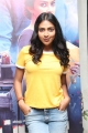 Actress Amala Paul @ Raatchasan Movie Audio Launch Stills