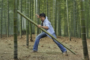 Racha Fight Stills at Bamboo Forest in China