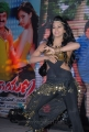 Rachana Maurya Hot Dance at Srimannarayana Triple Platinum Disc Function