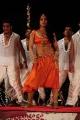 Rachana Maurya Hot Photo Gallery