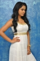 Rachana Maurya Photo Shoot Stills